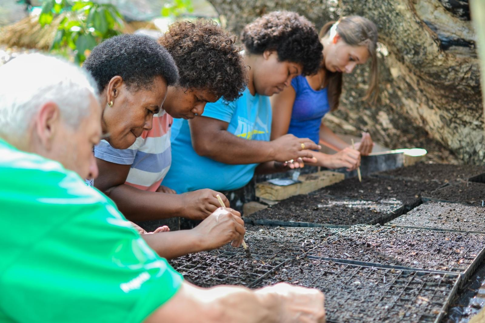 Senior volunteers planting seeds as part of conservation efforts in Fiji